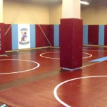 Indoor Gym Wall padding