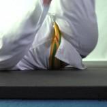 Karate Mat 1