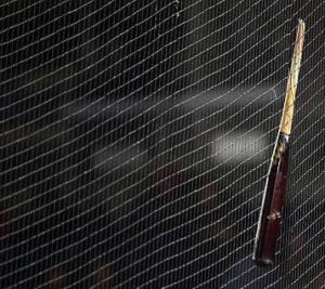 Broken Bat in net