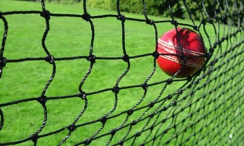 Cricket Backstop Nets