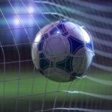 Soccer Backstop