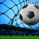 Soccer Backstop Net